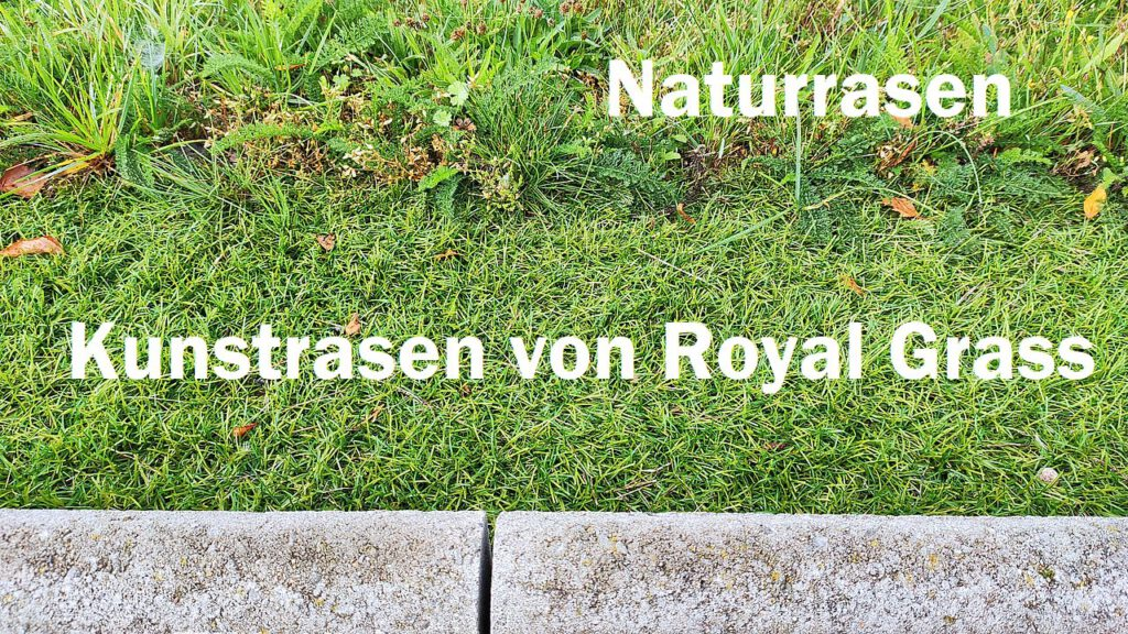 Kunstrasen und Naturrasen kombinieren